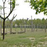 Foto Área Recreativa La Poveda en Villa del Prado 8