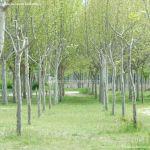 Foto Área Recreativa La Poveda en Villa del Prado 13