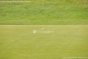 Foto Club de Golf El Robledal 8