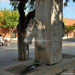 Foto Fuente Caballos 2