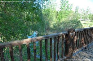 Foto Senda Ecológica de la Ribera del Tajo 3