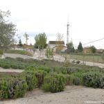 Foto Camino de la Ermita de Villamanta 5