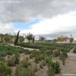 Foto Parque de la Ermita en Villamanta 1