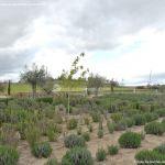 Foto Parque de la Ermita en Villamanta 3