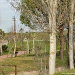 Foto Paseo de San Antonio 5