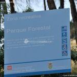 Foto Parque Forestal La Pililla 4