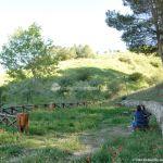 Foto Parque Forestal La Pililla 9