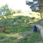 Foto Parque Forestal La Pililla 11
