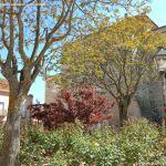 Foto Santuario de Nuestra Señora de la Victoria 5