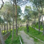 Foto Parque Forestal en Villanueva de Perales 7
