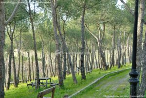 Foto Parque Forestal en Villanueva de Perales 9