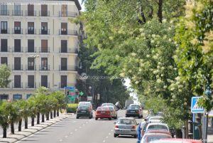 Foto Calle de Ferraz de Madrid 36