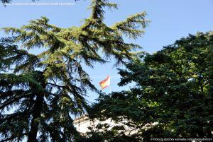 Foto Museo del Prado 73