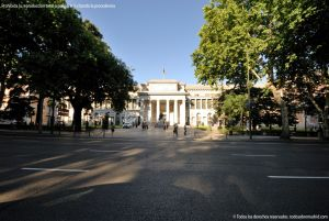 Foto Museo del Prado 88