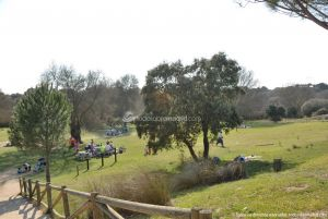 Foto Área Recreativa de la Ermita de Villanueva del Pardillo 57