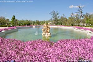 Foto Jardín del Parterre 25