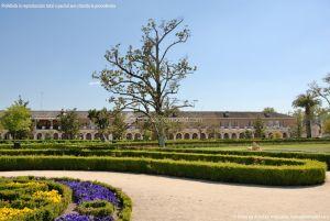 Foto Jardín del Parterre 37