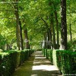 Foto Jardín de la Isla 13