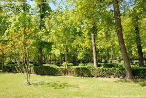 Foto Jardín de la Isla 17