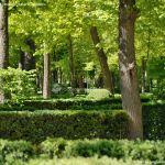 Foto Jardín de la Isla 22