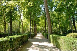 Foto Jardín de la Isla 28
