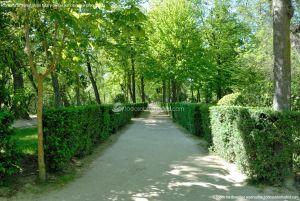 Foto Jardín de la Isla 30