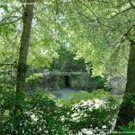 Foto Jardín de la Isla 34