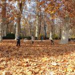 Foto Jardín de la Isla 37