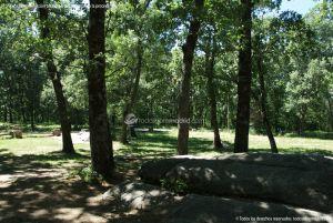 Foto Área Recreativa Nuestra Señora La Virgen de Gracia 2