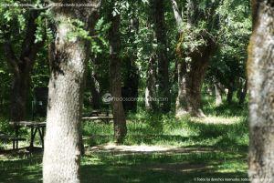 Foto Área Recreativa Nuestra Señora La Virgen de Gracia 8