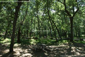 Foto Área Recreativa Nuestra Señora La Virgen de Gracia 10