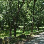 Foto Área Recreativa Nuestra Señora La Virgen de Gracia 14