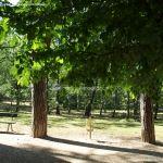 Foto Parque Casita del Príncipe 8