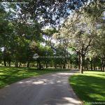 Foto Parque Casita del Príncipe 14