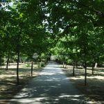 Foto Parque Casita del Príncipe 15