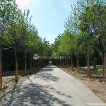 Foto Parque Casita del Príncipe 23