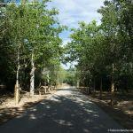 Foto Parque Casita del Príncipe 26