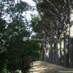 Foto Parque Casita del Príncipe 32