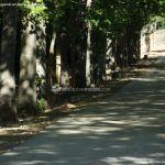 Foto Ardillas en el Parque del Príncipe 1