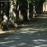 Foto Ardillas en el Parque del Príncipe 2