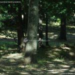 Foto Ardillas en el Parque del Príncipe 4