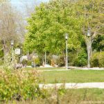 Foto Parque de Felipe II 9