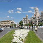 Foto Plaza de Cibeles 4