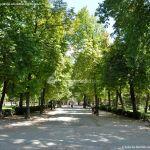 Foto Parque de El Retiro 12