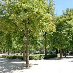 Foto Parque de El Retiro 17