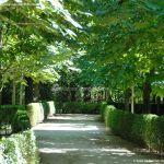Foto Parque de El Retiro 56