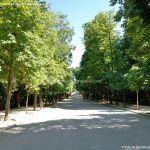 Foto Parque de El Retiro 95