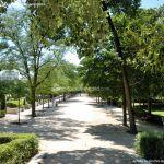 Foto Parque de El Retiro 99