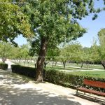 Foto Parque de El Retiro 132
