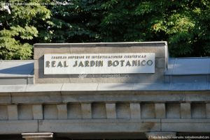Foto Real Jardín Botánico 1